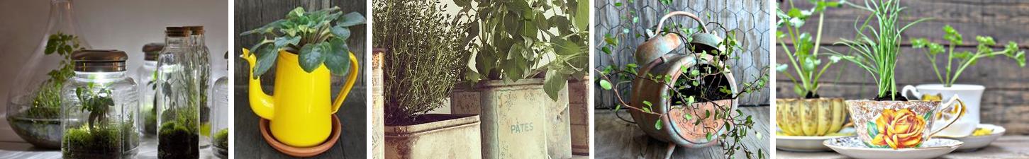 objets-detournes-vegetalises