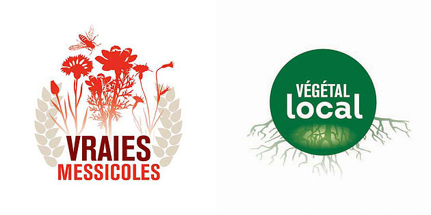 logo messocoles et végétal local