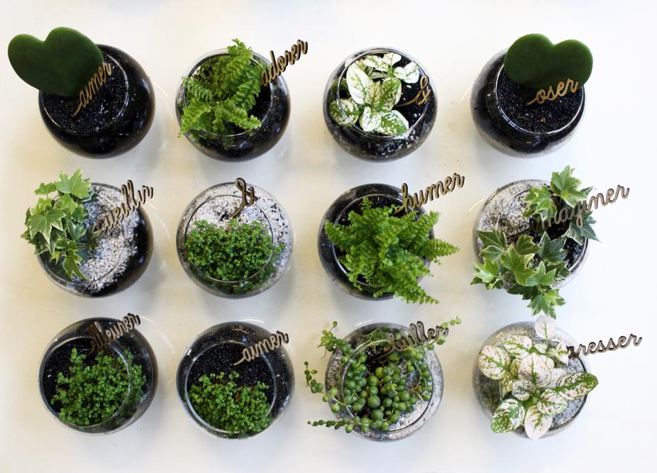 verbarium-boule-végétale-liligarden-1