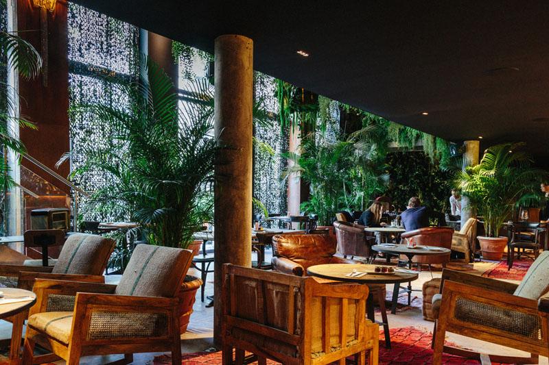 LiliGarden-KubeHotel-plante-depolluante-ambiance-jungle
