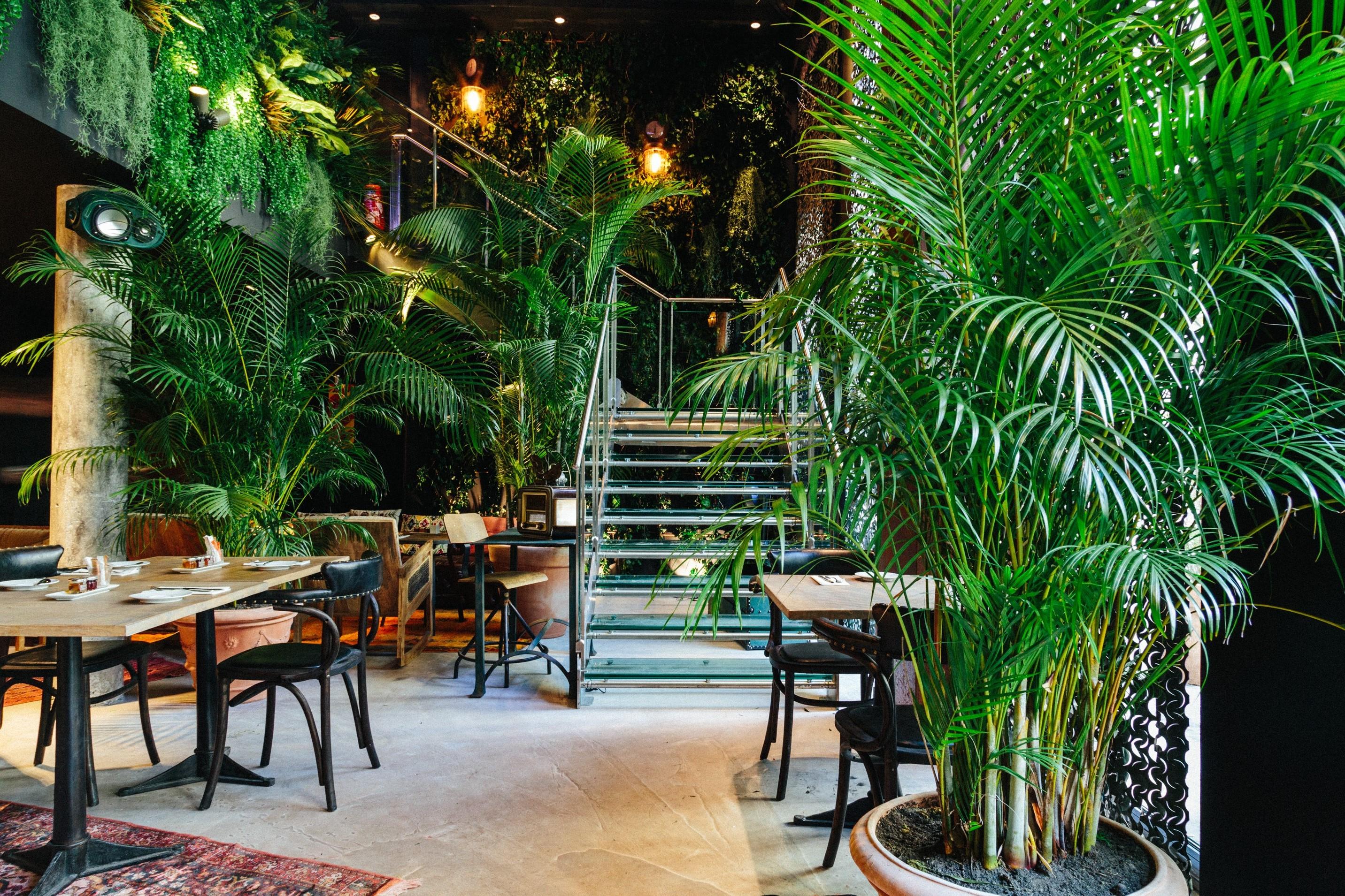 L'intérieur de l'hôtel Kube à Paris débordant de plantes d'intérieur dépolluantes.