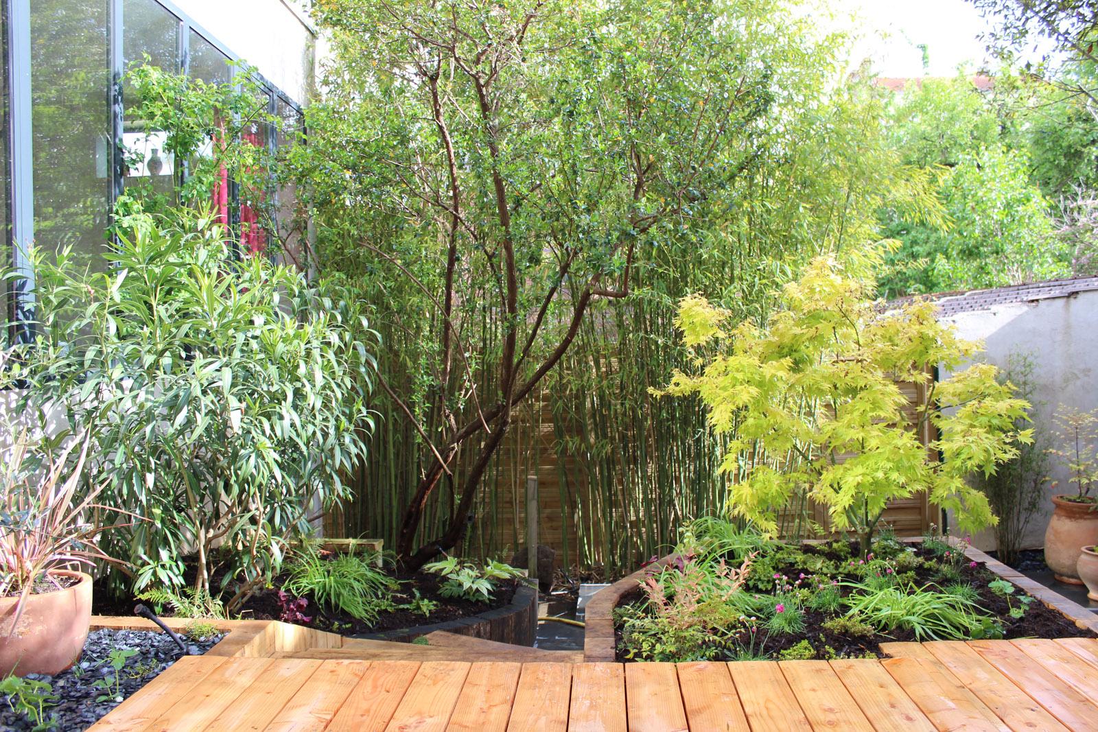 jardin-tropical