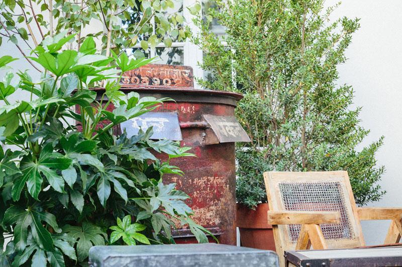 LiliGarden-KubeHotel-plantes-deco-vintage